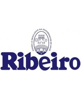 O.D. Ribeiro
