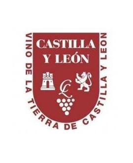 VT Castilla/León